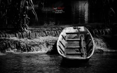 barque isle sur la sorgue