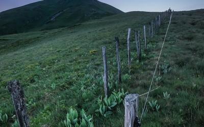 Puy Gros | Gentiane Verâtre
